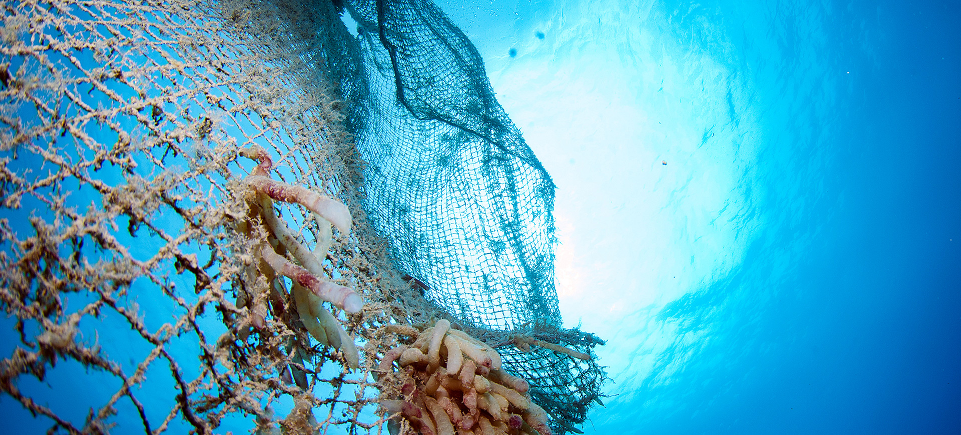 Fishing net in ocean