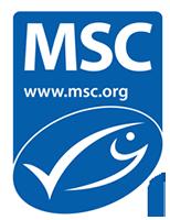 msc logo 0