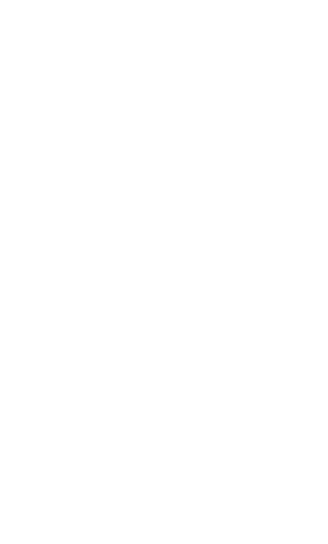 bcorp logo white